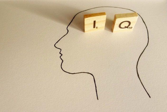 Come nasce l'intelligenza?